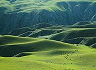 新疆阔克苏大峡谷自然风光大图