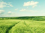 故乡草原风景壁纸优美怡人