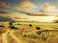 草原海滨湖泊唯美风景图片