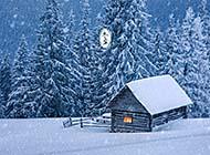 冬日唯美森林纯白浪漫雪景壁纸