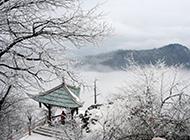 峨眉山雪景图片晶莹素裹