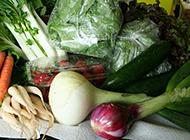各种新鲜的蔬菜植物图片