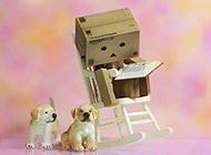 创意的卖萌纸盒人图片素材大全