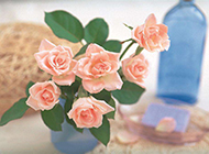 情人节玫瑰花束唯美清新