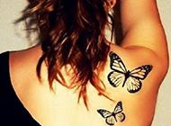 好看的蝴蝶纹身图片大全 别样性感迷人