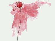水墨国画植物图片月季花壁纸