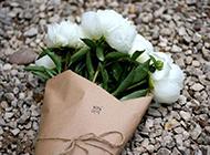 鲜花图片大全花束唯美小清新壁纸精选