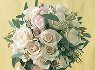 婚礼上的白玫瑰花束唯美图片