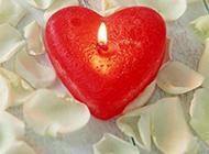 花瓣上的心形蜡烛摄影图片