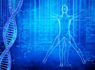 ppt背景图片简约人体平面图与DNA医疗科技
