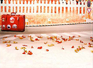 秋天枫叶背景图片素材