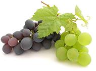 鲜嫩水灵的葡萄高清图片