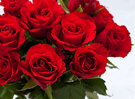 红玫瑰插花与心形吊坠图片素材