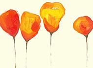 鲜花彩绘素描图片
