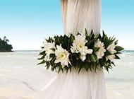 浪漫沙滩海边的花束唯美图片