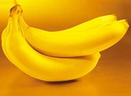 热带水果植物香蕉图片素材分享