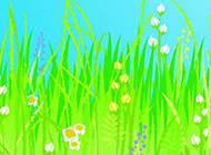 卡通野花彩色线描画植物图片