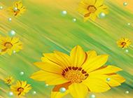向日葵花图片优雅水彩画素材