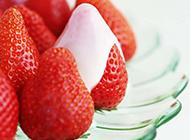 高清草莓植物图片大全
