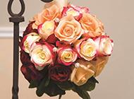 玫瑰花花束唯美节日图片素材