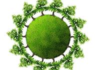 绿树环保创意地球图片