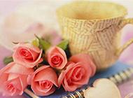 玫瑰花与杯子唯美图片素材