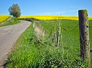 美丽村庄高清绿色风景养眼壁纸