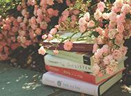 花朵余书本复古唯美意境大图