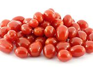 健胃消食的樱桃小番茄图片