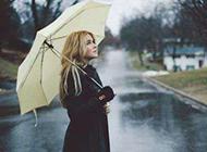 精美雨伞唯美意境图片