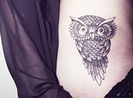 女人腰部动物纹身图片