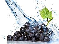 被水冲洗的葡萄高清图片