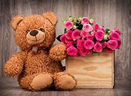 婚礼浪漫泰迪熊粉玫瑰唯美素材