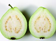 果肉柔滑的珍珠番石榴图片