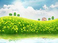 春天的田野油菜花图片