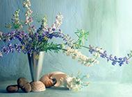 清新文艺的花瓶静物壁纸