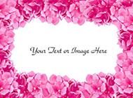 粉色背景图片素材浪漫清新