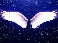 带翅膀梦幻唯美背景图