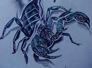 蝎子图腾纹身图案帅气手稿