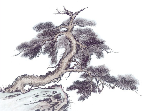 屹立不倒的松树国画图片