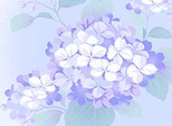 高清非主流花卉创意设计唯美背景壁纸