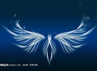 翅膀荧光蓝色背景图赏析