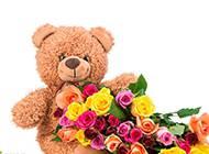 泰迪熊布偶与彩色玫瑰浪漫美图