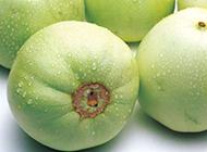 刚洗过的梨瓜摄影图