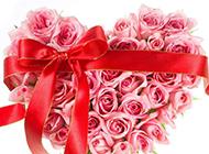 情人节浪漫心形粉红玫瑰花