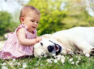 漂亮宝宝图片下载创意可爱