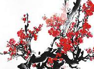 水墨国画红梅俏挂枝头美图