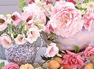 粉嫩浪漫花卉插花艺术风景壁纸