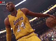 单机游戏《NBA 2K14》精彩截图