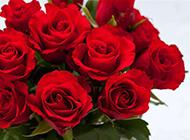婚礼上的心形吊坠与玫瑰花瓶图片素材